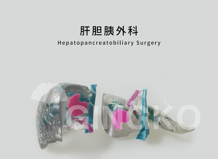 肝胆胰外科案例