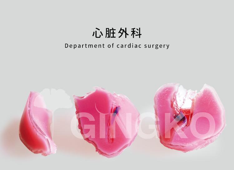 心脏外科案例